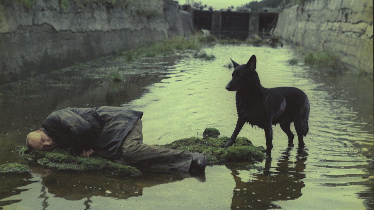 画像: Andrei Tarkovsky's sci-fi classic Stalker is getting an HD restoration