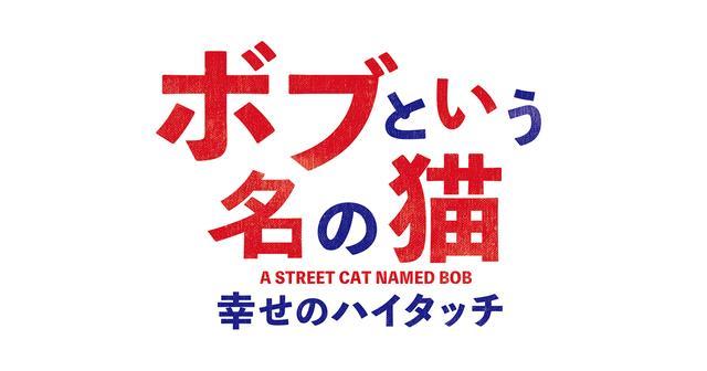 画像: 映画「ボブという名の猫 幸せのハイタッチ」オフィシャルサイト