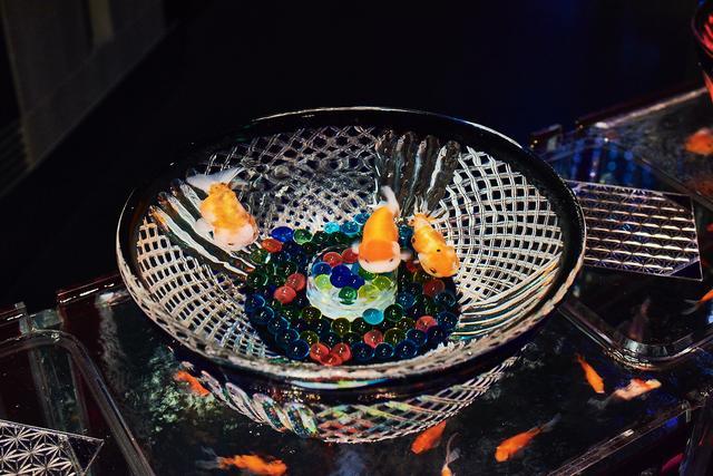 画像: キリコリウム 写真提供:Art Aquarium