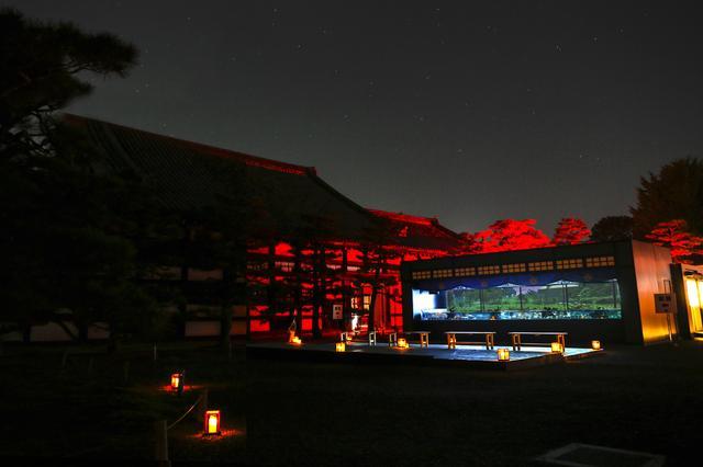 画像3: アートアクアリウム城(2014年)※過去の展覧会の様子 写真提供:Art Aquarium