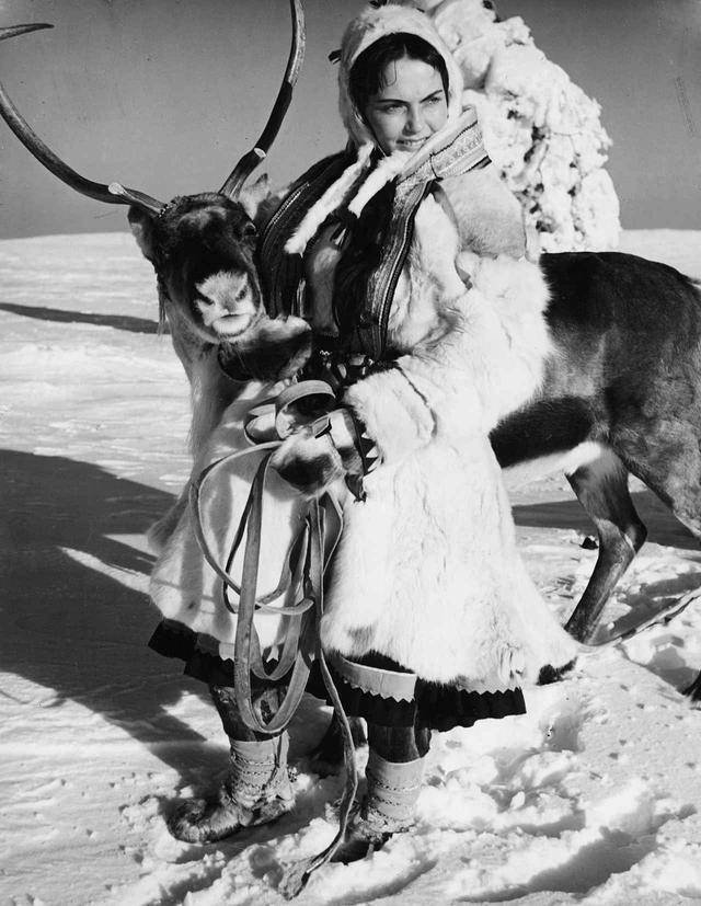 画像2: 『白いトナカイ』 Valkoinen peura/The White Reindeer 監督:エーリック・ブロンベリ 出演:ミリヤミ・クオスマネン、カレルヴォ・ニッシラ
