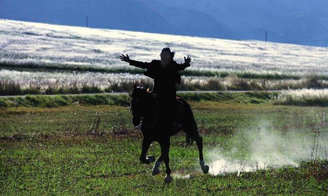 画像2: キルギスが世界に誇る名匠アクタン・アリム・クバト監督の最新作『馬を放つ』-岩波ホール創立 50 周年記念作品第2弾として上映!