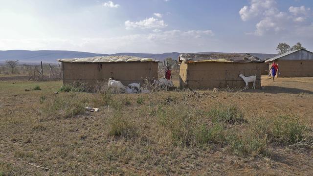 画像: 牛糞でできた家