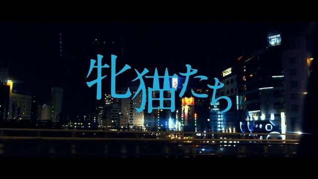 画像: 白石和彌監督『牝猫たち』予告編 youtu.be