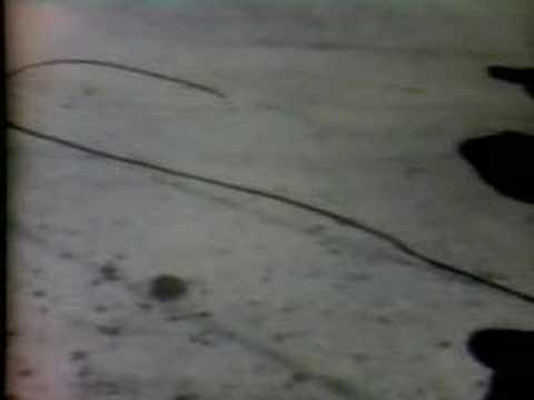 画像: Tate Murder CBS 1969 Newscast youtu.be