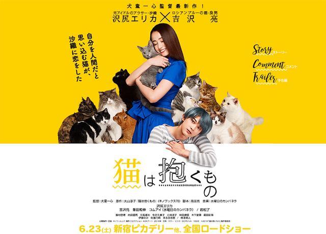画像: 映画「猫は抱くもの」公式サイト