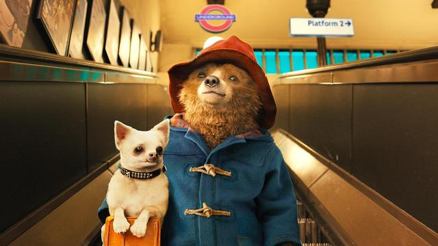画像: (C)2014STUDIOCANALS.A.TF1FILMSPRODUCTIONS.A.S.PADDINGTONBEAR?, PADDINGTON?AND PB?ARE TRADEMARKS OF PADDINGTON AND COMPANY LIMITED