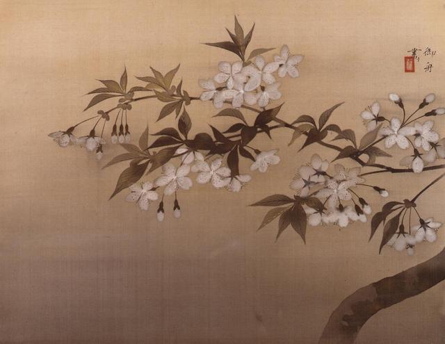 画像: 速水御舟《夜桜》1928(昭和3)年 絹本・彩色 山種美術館