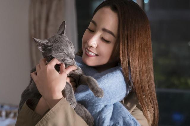 画像1: ©2018「猫は抱くもの」製作委員会
