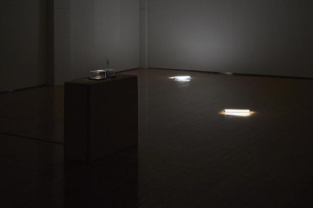 画像: Photo: Takahashi Kenji / Photo courtesy: Tokyo Arts and Space 間断なく反復される重低音のノイズの中、60平米ほどの空間には三筋のスポットライトだけが灯されている。 暗闇の中、スクリプト、セリフが書かれた紙、黒い台の上に置かれたガラスの立方体が浮かび上がる。