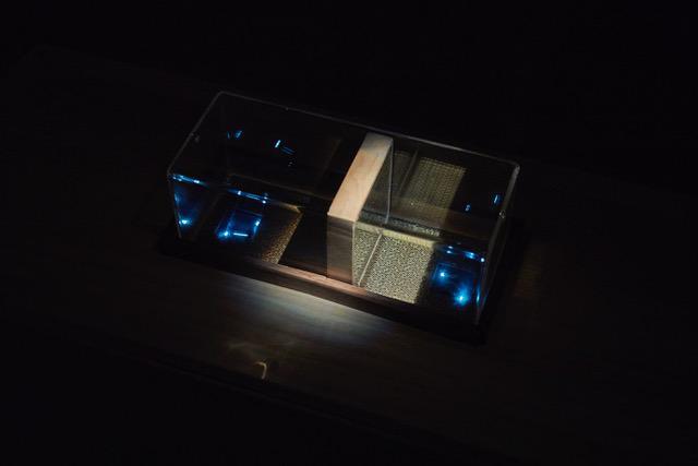 画像: Photo: Takahashi Kenji / Photo courtesy: Tokyo Arts and Space ガラスの立方体の中は水で満たされ、鏡の壁で二つの空間に仕切られている。 双方の部屋には液晶が配置され、プレイ中のゲームが映し出されている。 この二つの空間は鏡の反射により、互いが更に大きく見える錯覚を与え、まるで生物のように相互に関わりあう。 鏡の壁は、ゲームの勝者の方により大きな水の体積をもたらす、関の役割を果たしている。