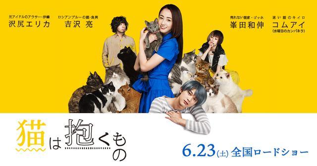 画像: 6月23日全国公開 映画『猫は抱くもの』公式サイト