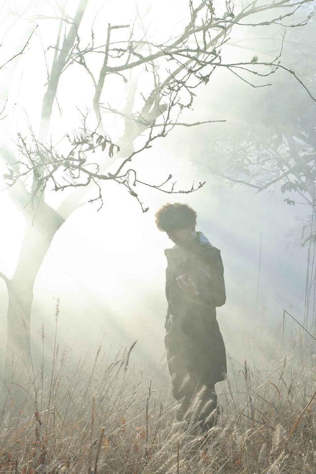 画像2: ©Plasir/Film Bandit