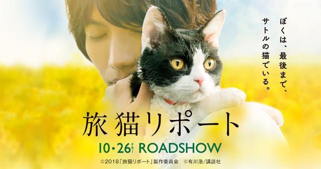 画像: 映画『旅猫リポート』公式サイト