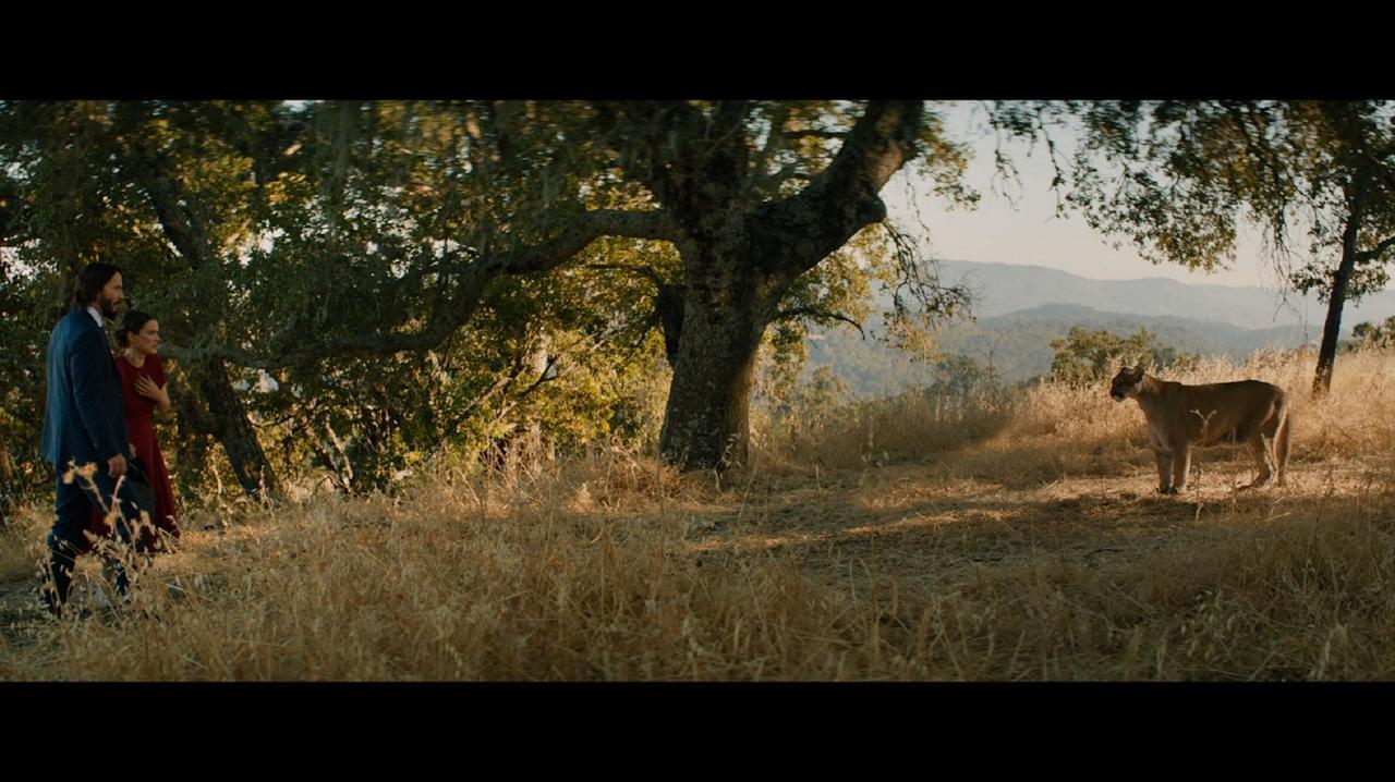 画像3: キアヌ・リーブス&ウィノナ・ライダー4度目の共演作『おとなの恋は、まわり道』初共演から26年たっても相性バツグンの二人の解禁写真!