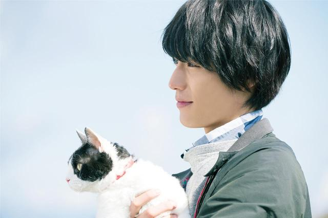 画像1: ©2018「旅猫リポート」製作委員会 ©有川浩/講談社