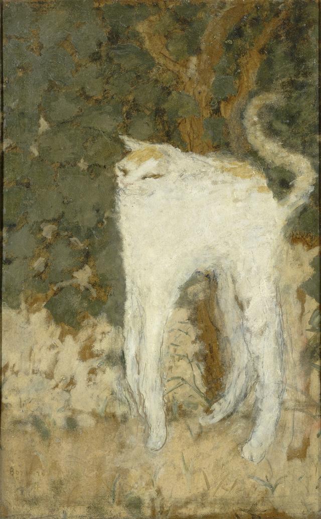 画像: ピエール・ボナール《白い猫》1894年 油彩、厚紙 51.9×33.5cm オルセー美術館  © RMN-Grand Palais (musée d'Orsay) / Hervé Lewandowski / distributed by AMF