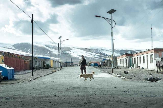 画像: 『轢き殺された羊』ペマツェテン監督