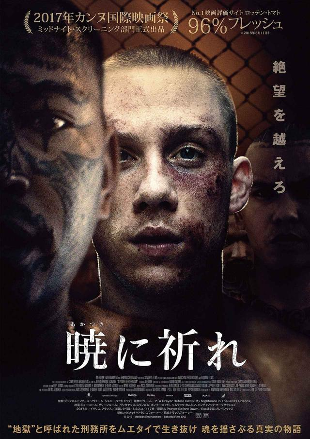画像1: © 2017 - Meridian Entertainment - Senorita Films SAS