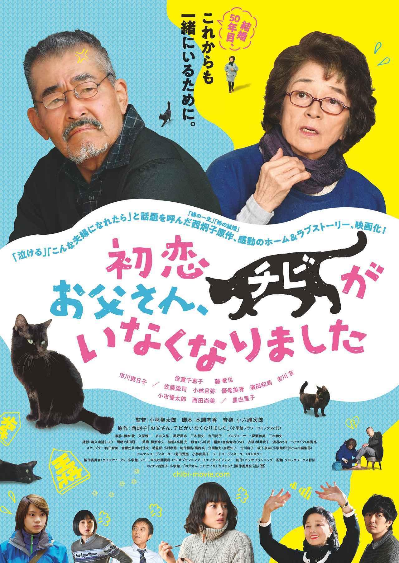 画像: 50 年一緒に過ごしてきて、初めてお互いの気持ちに向き合う 2 人に起こる、猫がくれた優しい奇跡『初恋〜お父さんチビがいなくなりました』予告公開!