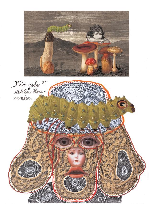 """画像: ヤン・シュヴァンクマイエル 「芋虫の教え」Illustration for the book """"Alice"""", 2006, by Jan Švankmaher, ©Athanor Ltd."""