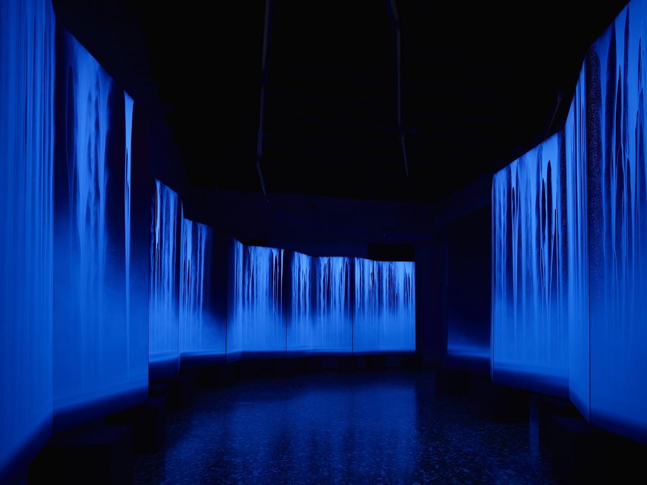 画像: 《龍神I・II》 2015年 240.0×1140.0cm(各六曲一双) 軽井沢千住博美術館蔵 (2015年ヴェネツィア・ビエンナーレの展示風景)