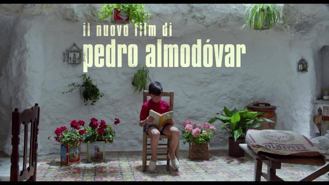 画像: Dolor Y Gloria