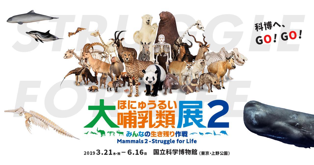 画像: 大哺乳類展2