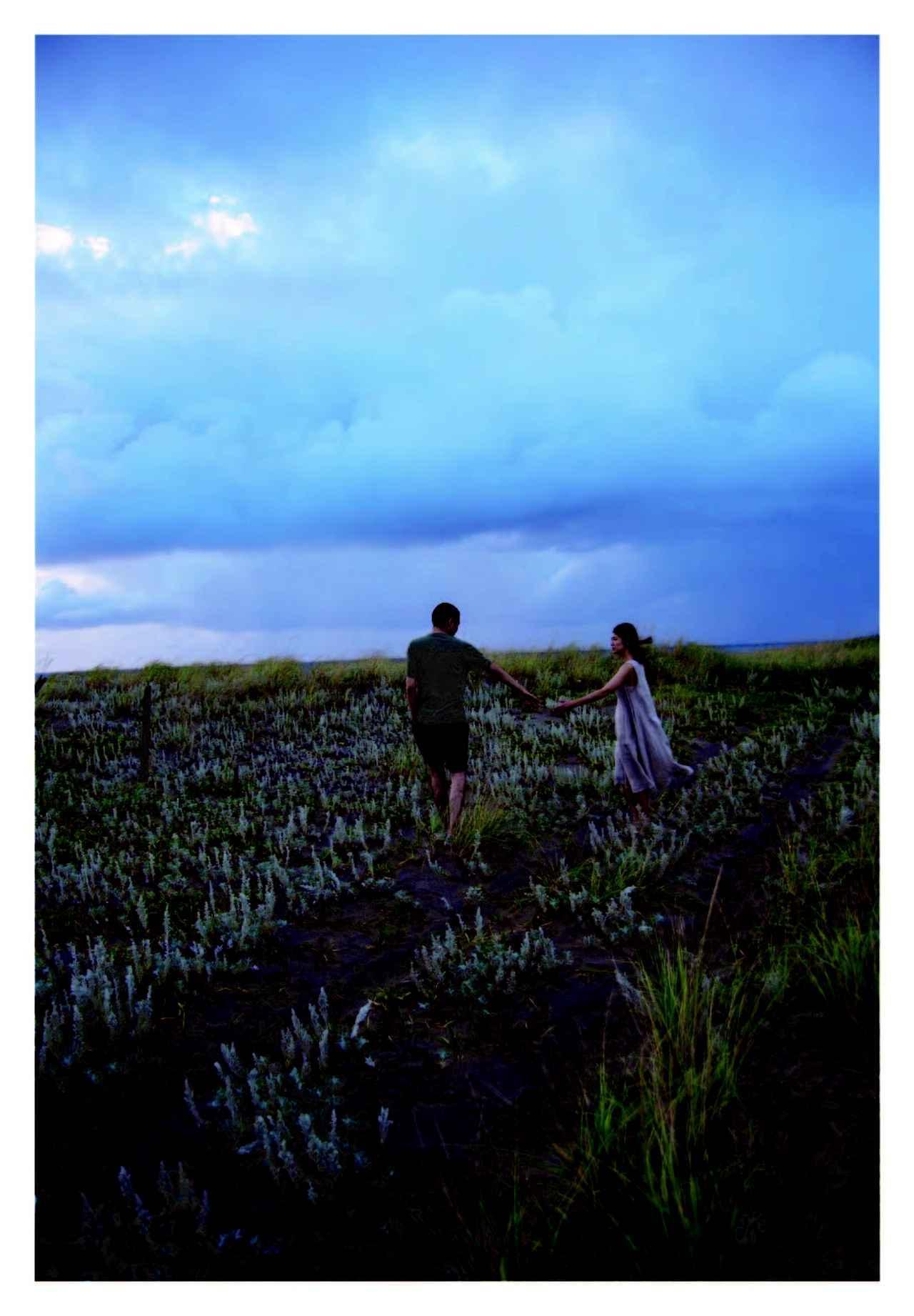 画像3: 野村佐紀子撮影『火口のふたり』オリジナルポストカード画像