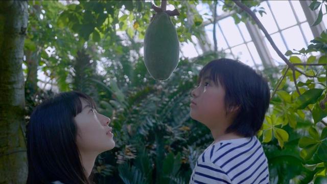 画像: 『散歩する植物』 35分 監督:金子由里奈 (23歳/東京都出身/立命館大学 映画部)
