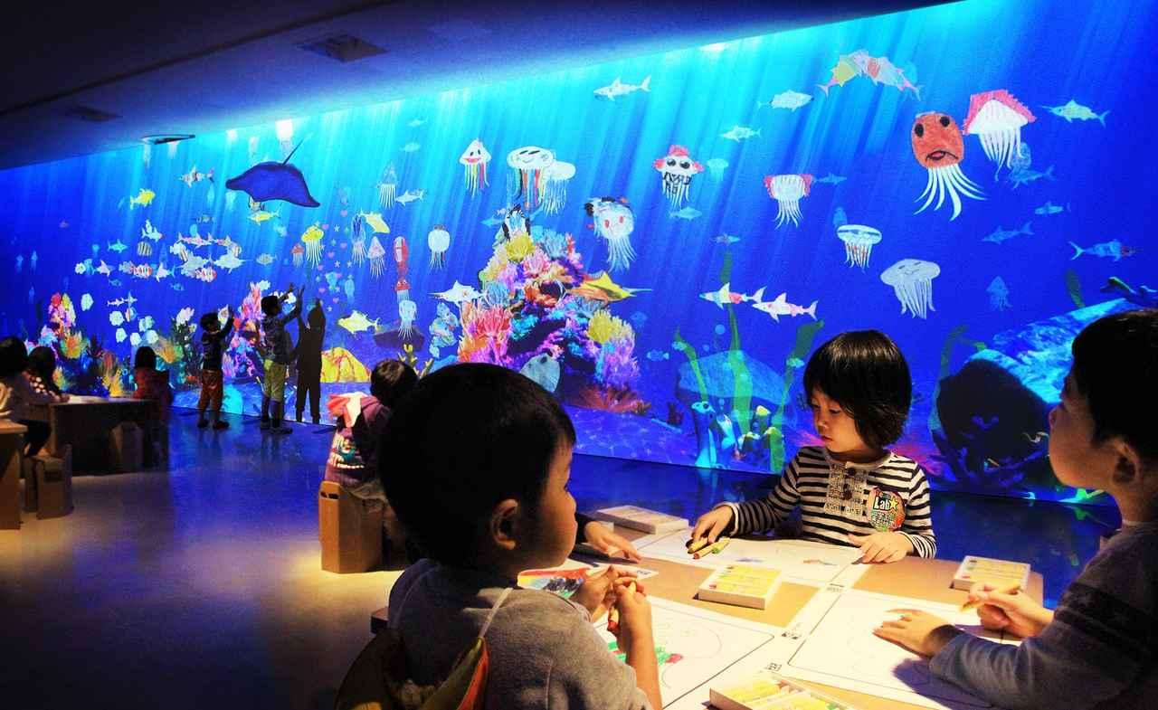 画像: お絵かき水族館 / Sketch Aquarium teamLab, 2013-, Interactive Digital Installation, Sound: Hideaki Takahashi, teamLab