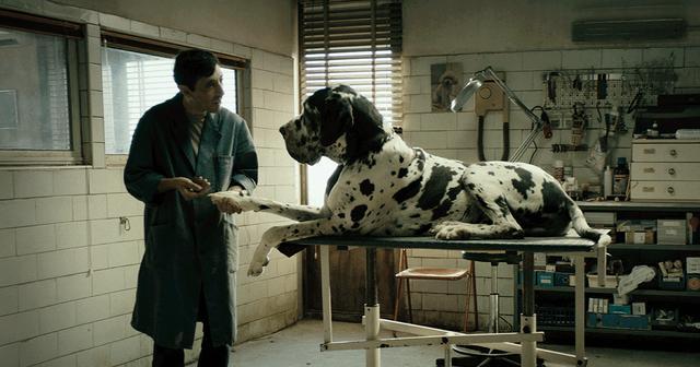 画像: 映画『ドッグマン』公式サイト