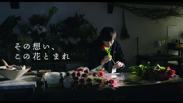 画像: 主演・田中圭 × 監督・今泉力哉 映画『mellow』(メロウ)特報 youtu.be