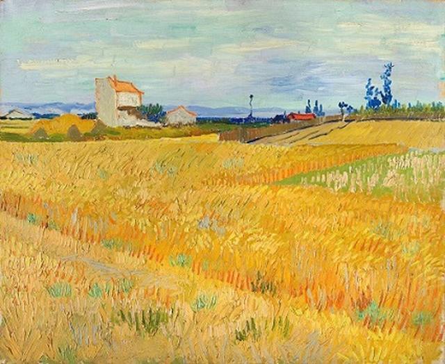 画像: フィンセント・ファン・ゴッホ 《麦畑》 1888年6月 油彩、カンヴァス 50×61cm P. & N. デ・ブール財団 © P. & N. de Boer Foundation