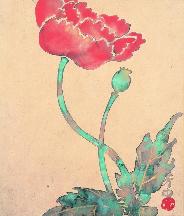画像: 中村芳中 〈花卉図画帖〉より「七月芥子」 細見美術館蔵
