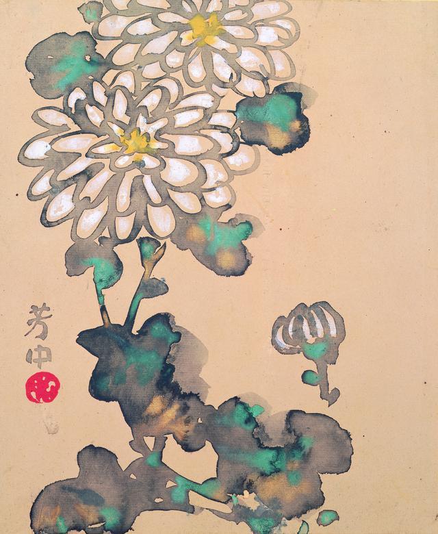 画像: 中村芳中〈花卉図画帖〉より「十月白菊」 細見美術館蔵