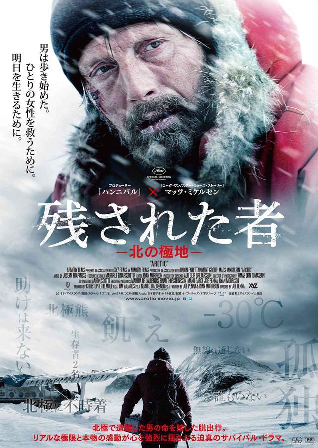 画像1: © 2018 Arctic The Movie, LLC.