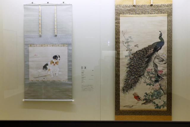 画像: 長沢芦雪の描いた孔雀と、昭和初期・竹内栖鳳の描いた子犬