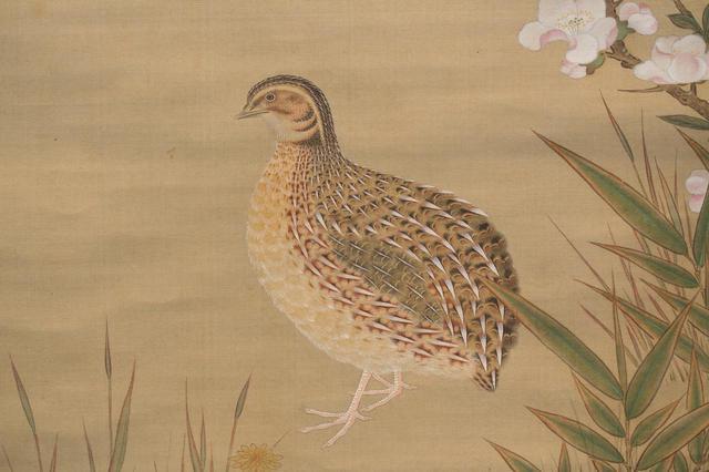 画像: 土佐光起「木瓜鶉・菊鶲図」(部分)江戸時代17世紀 住友コレクション