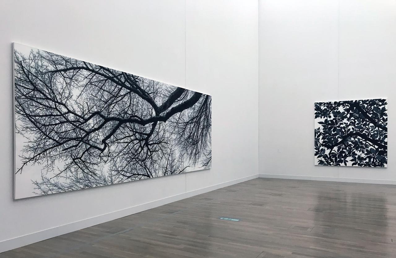 画像: 「5 自然の摂理、時間の蓄積」 展示風景:日高理恵子 左:《樹を見上げてVII》 1993年、右:《空との距離XIV》 2017年 photo©saitomoichi
