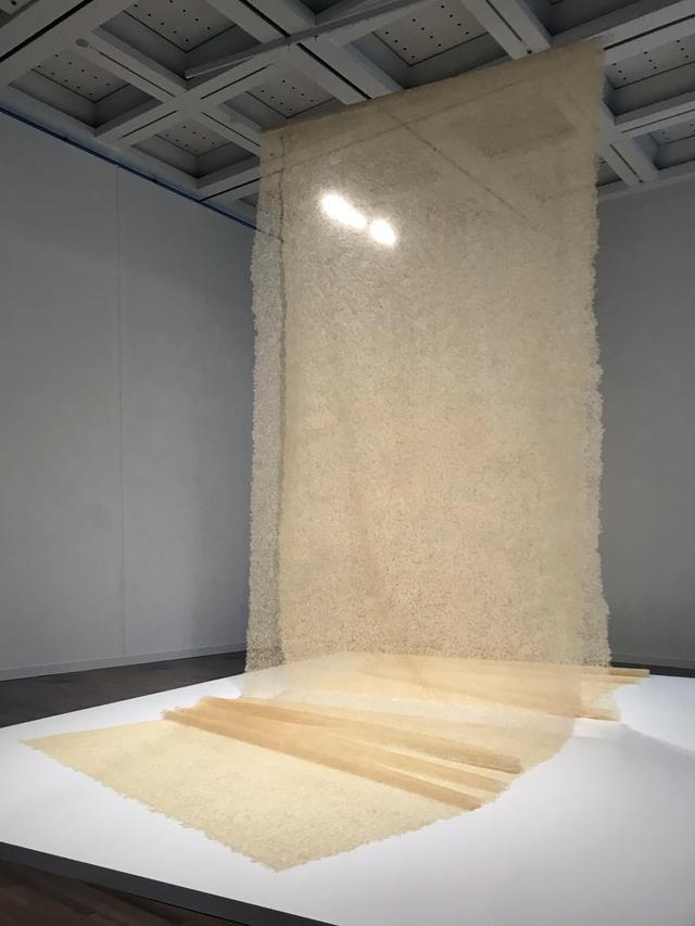 画像: 「5 自然の摂理、時間の蓄積」 展示風景:宮永愛子 《景色のはじまり》 2011年〜 photo©saitomoichi