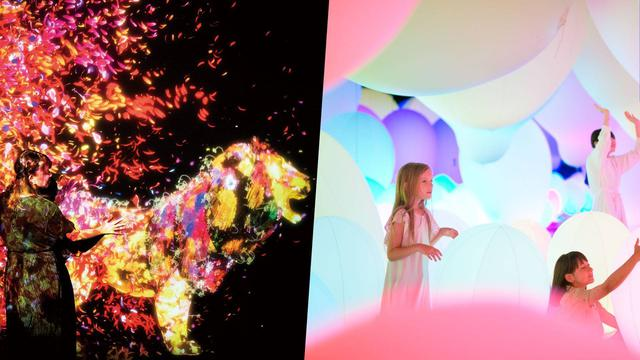画像: 名古屋市科学館開催地 | チームラボ 学ぶ!未来の遊園地