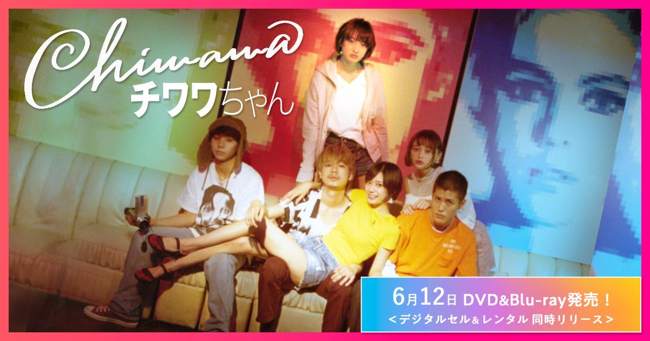 画像: 映画『チワワちゃん』公式サイト|6月12日DVD&Blu-ray発売!<デジタルセル&レンタル 同時リリース>