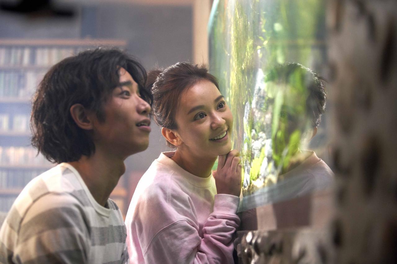 画像4: 予告❗️台湾、中国、韓国、、、超メガヒット!アジア中が涙したラブストーリー『悲しみより、もっと悲しい物語』