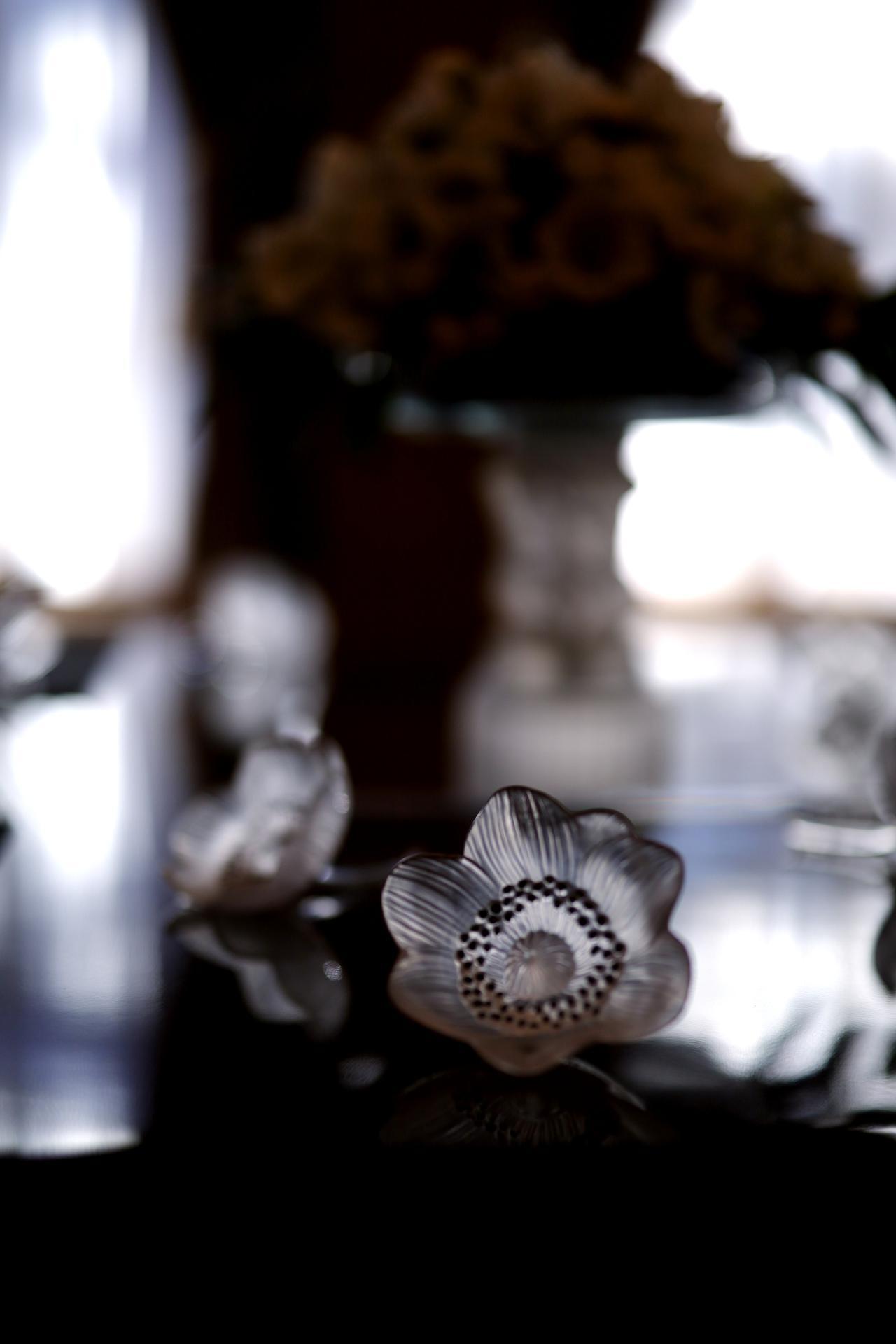 画像: ルネ・ラリック 装飾品「開いたアネモネ」1931年 北澤美術館蔵