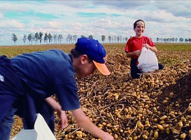 画像: (c) ciné tamaris 2000
