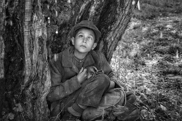 画像2: @2019 ALL RIGHTS RESERVED SILVER SCREEN ČESKÁ TELEVIZE EDUARD & MILADA KUCERA DIRECTORY FILMS ROZHLAS A TELEVÍZIA SLOVENSKA CERTICON GROUP INNOGY PUBRES RICHARD KAUCKÝ