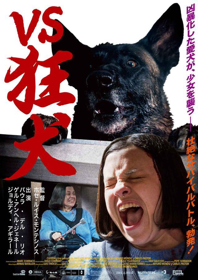 画像1: 『VS狂犬』