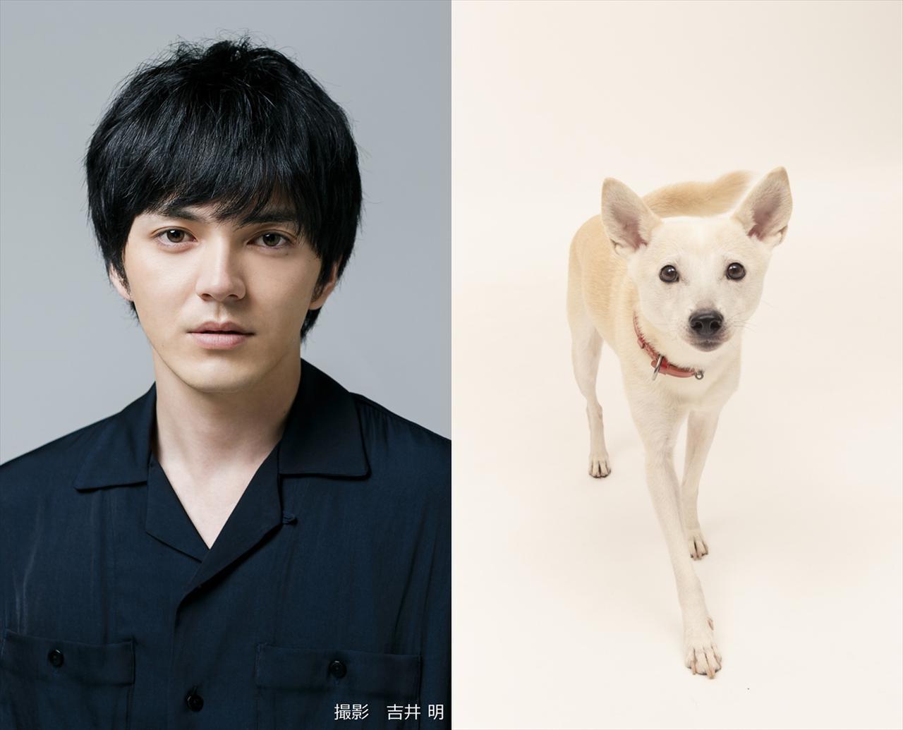 画像1: ©2021「犬部!」製作委員会