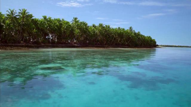 画像: 予告完成!今、世界に問いかけるドキュメンタリー映画『プラスチックの海』